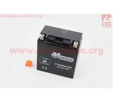 Аккумулятор 14Аh YTX20CH-BS(гелевый) 150/85/160мм, 2018